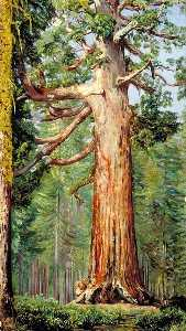 Marianne North - The 'Great Grisly' Big Tree of the Mariposa Grove