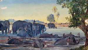 Marianne North - Elephants