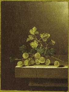 After Adriaen Coorte - English Spray of Green Gooseberries on a Stone Plinth