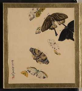 Shibata Zeshin - Lacquer Paintings of Various Subjects Butterflies