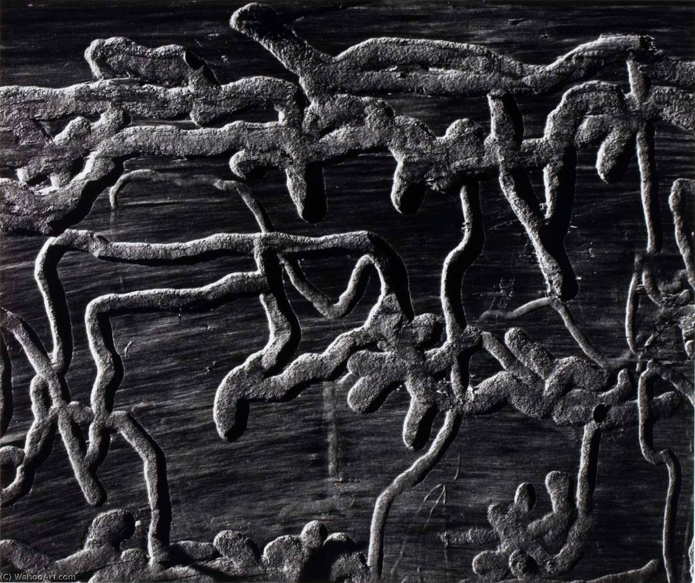 Untitled (Wormwood), 1973 by Brett Weston (1911-1993, United States) |  | WahooArt.com