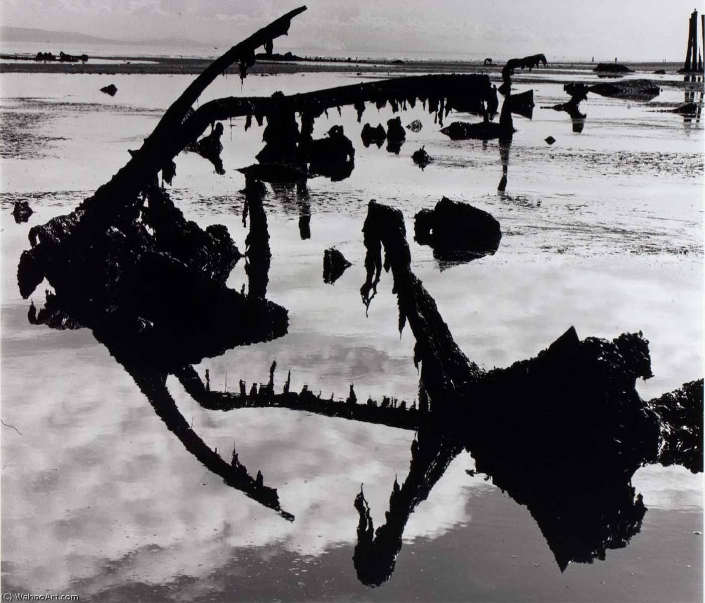 Untitled (Swamp), 1973 by Brett Weston (1911-1993, United States) |  | WahooArt.com