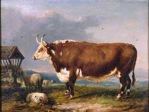 James Ward - Hereford Bull with Sheep by a Haystack