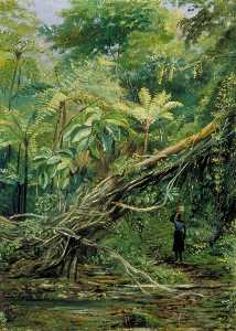 Marianne North - View under the Ferns at Gongo, Brazil