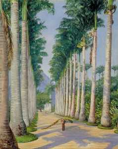 Marianne North - Side Avenue of Royal Palms at Botafogo, Brazil