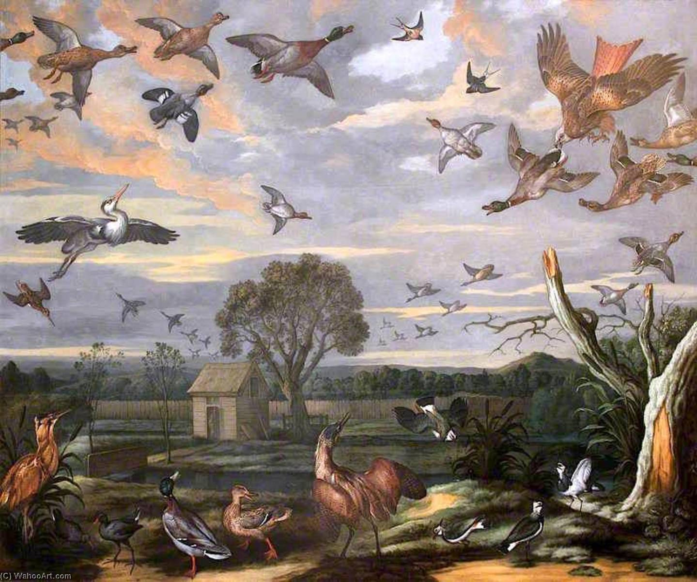 Landscape with Birds and a Duck Decoy, 1779 by Francis Barlow (1624-1704, United Kingdom) | Painting Copy | WahooArt.com