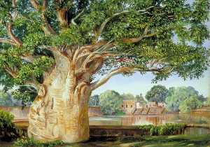 Marianne North - African Baobab Tree in the Princess's Garden at Tanjore, India