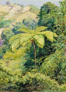 Marianne North - Tree Fern and 'Whish Whish' in the Punch Bowl Valley, Jamaica