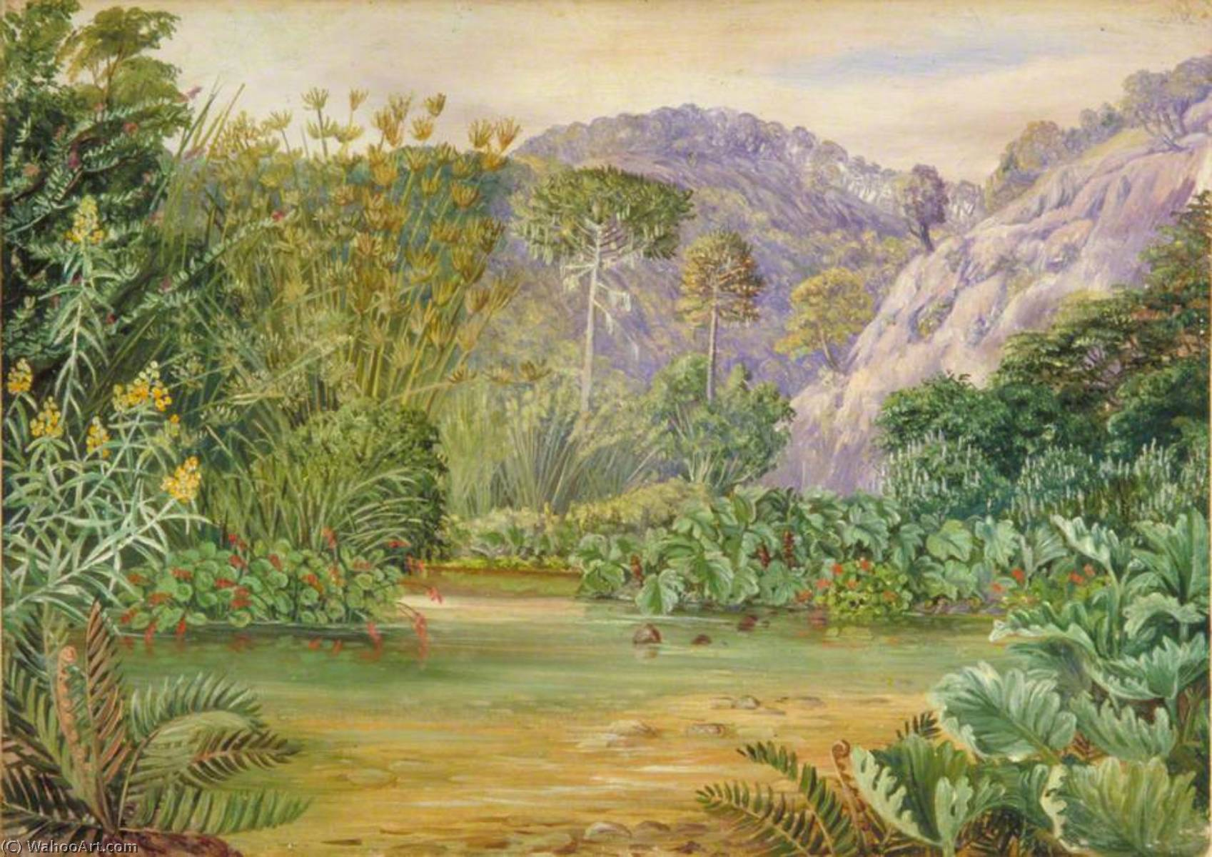 Vegetation on a Stream at Chanleon, Chili, 1873 by Marianne North (1830-1890, United Kingdom) | Museum Art Reproductions Marianne North | WahooArt.com