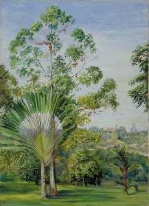 Marianne North - View of the Maharajah of Johore's House from Major McNair's Garden, Singapore