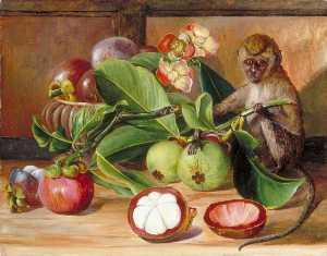 Marianne North - Flowers and Fruit of the Mangosteen, and a Singapore Monkey