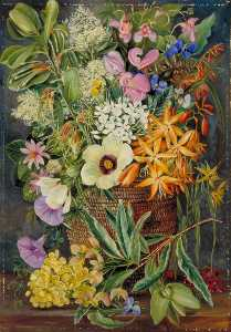 Marianne North - Flowers of St Johns in Pondo Basket