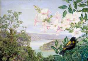 Marianne North - View on the Kowie River with Trumpet Flower in Front