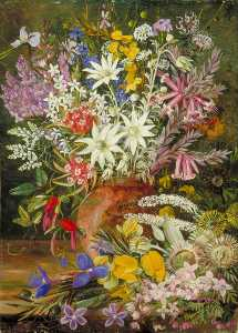 Marianne North - Wild Flowers of the Blue Mountains, New South Wales