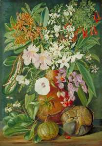 Marianne North - A Selection of Flowers, Wild and Cultivated, with Puzzle Nut, Mahé