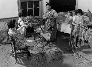 Marion Post Wolcott - The Titus Oakley family stripping, tying, and grading tobacco in their bedroom. Granville, County, North Carolina