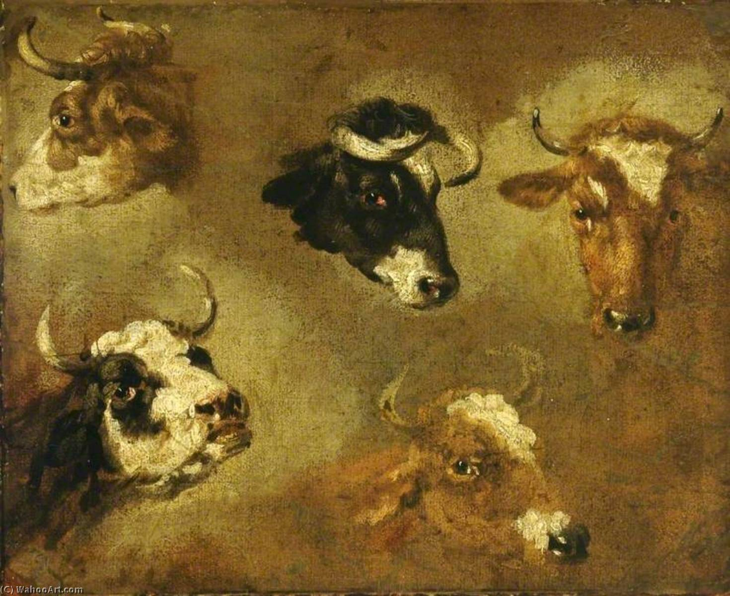 Studies of Cows` Heads by Nicolaes Berchem (1620-1683, Netherlands) | Painting Copy | WahooArt.com