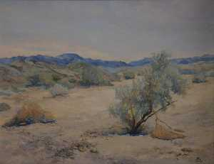 Mary Agnes Yerkes - Early in the Day in Desert Quiet, (painting)