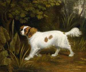 Sawrey Gilpin - A Cavalier King Charles Spaniel in a Landscape