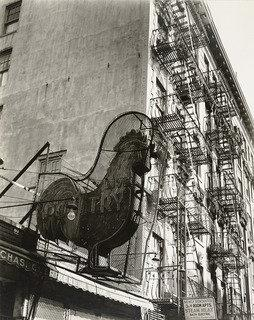 Poultry Shop, Lower East Side, New York City, Print by Berenice Abbott (1898-1991, United States)