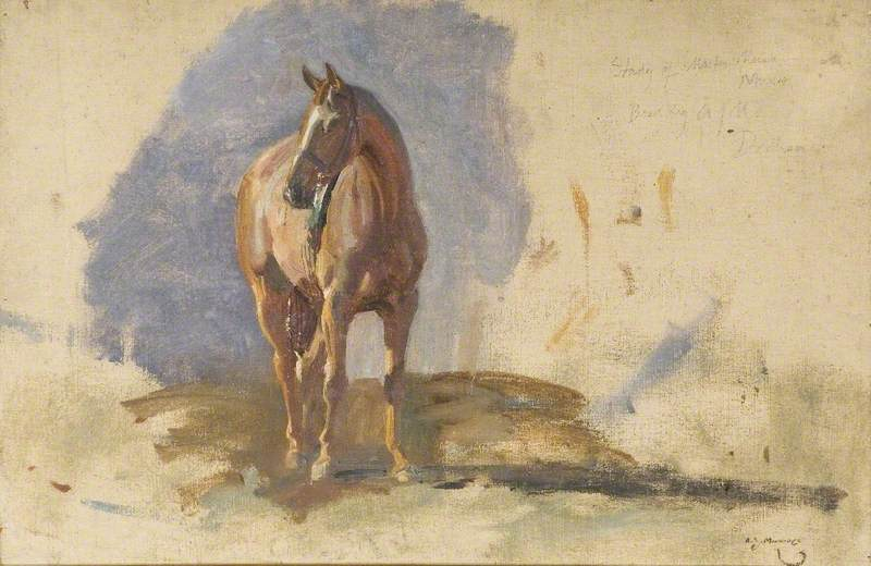 Study of a Bay Horse, `Master`, Bred by the Artist at Dedham by Alfred James Munnings (1878-1959, United Kingdom) |  | WahooArt.com
