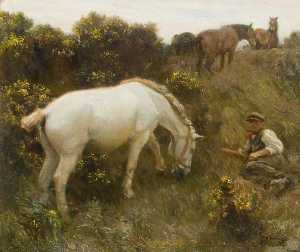 Alfred James Munnings - 'Shrimp' and 'Augereau' in Ringland Hills
