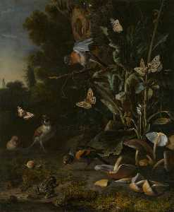 Melchior De Hondecoeter - Birds, Butterflies and a Frog among Plants and Fungi