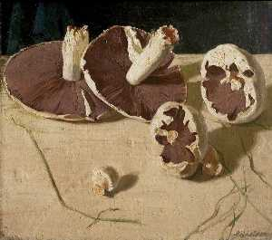 William Newzam Prior Nicholson - Mushrooms