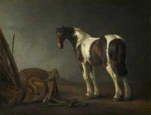 Order Reproductions | A Brown and White Skewbald Horse with a Saddle beside it, 1680 by Abraham Pietersz Van Calraet (1642-1722) | WahooArt.com