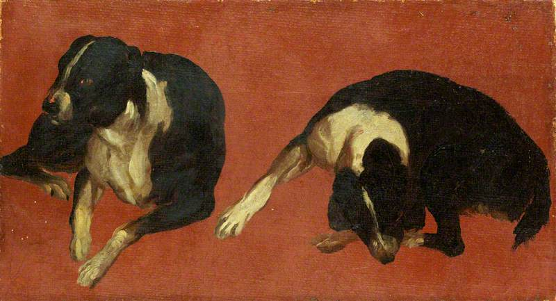 Two Studies of a Dog, 1710 by Luca Carlevaris (1663-1730, Italy) | WahooArt.com