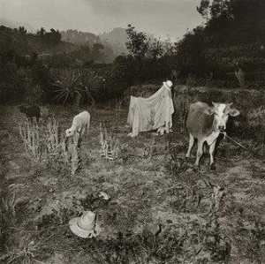 Rosalind Fox Solomon - Untitled, Guatemala