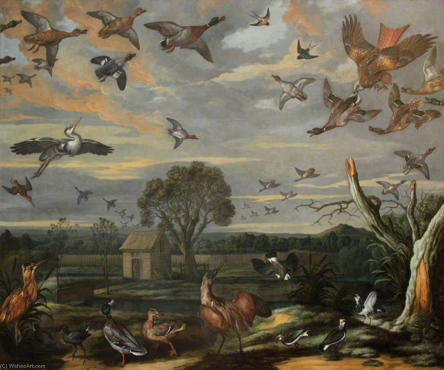 Landscape with Birds and a Duck Decoy, 1670 by Francis Barlow (1624-1704, United Kingdom) | Museum Quality Reproductions | WahooArt.com
