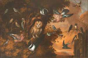 Francis Barlow - An Owl Being Mobbed by Other Birds