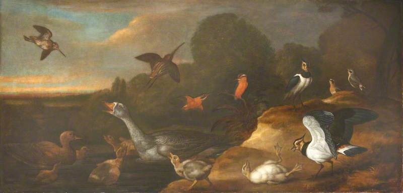 A Goose with Goslings, Curlews, and Other Marsh and Moorland Birds, 1673 by Francis Barlow (1624-1704, United Kingdom) | Oil Painting | WahooArt.com