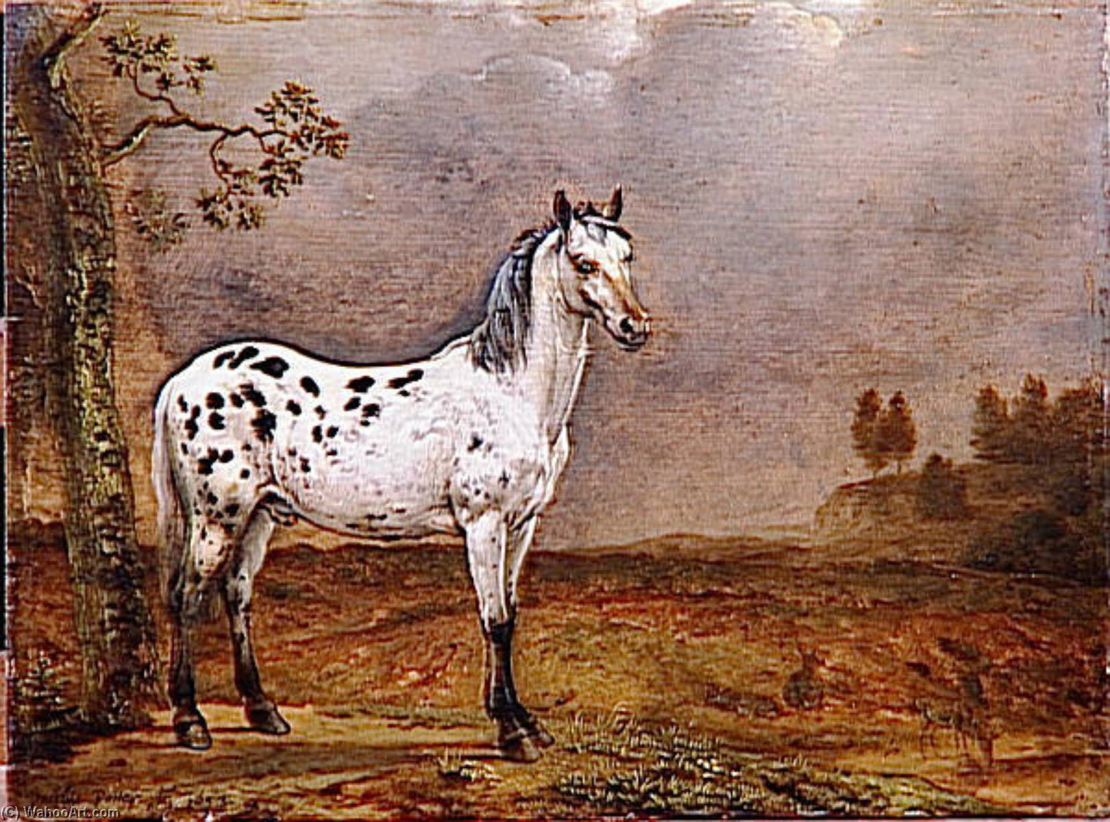 LE CHEVAL PIE, Oil by Paulus Potter (1625-1654, Netherlands)