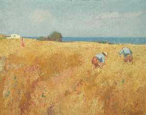 Michalis Economou - In the Field