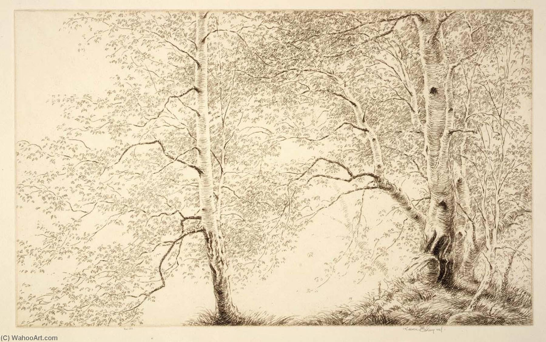 Birches, Etching by Kerr Eby