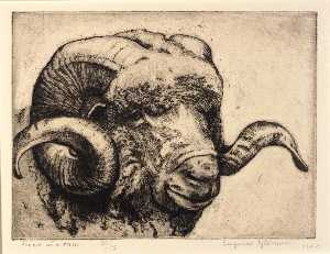 Eugenie Fish Glaman - Head of a Ram