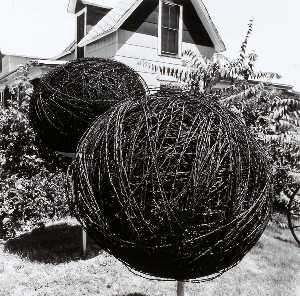Larry W Schwarm - Wire Collection, Ottawa County, from the Kansas Documentary Survey Project