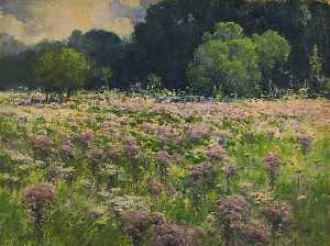 William Henry Holmes - Field of Joe Pie Weeds (Pride of the Meadow)