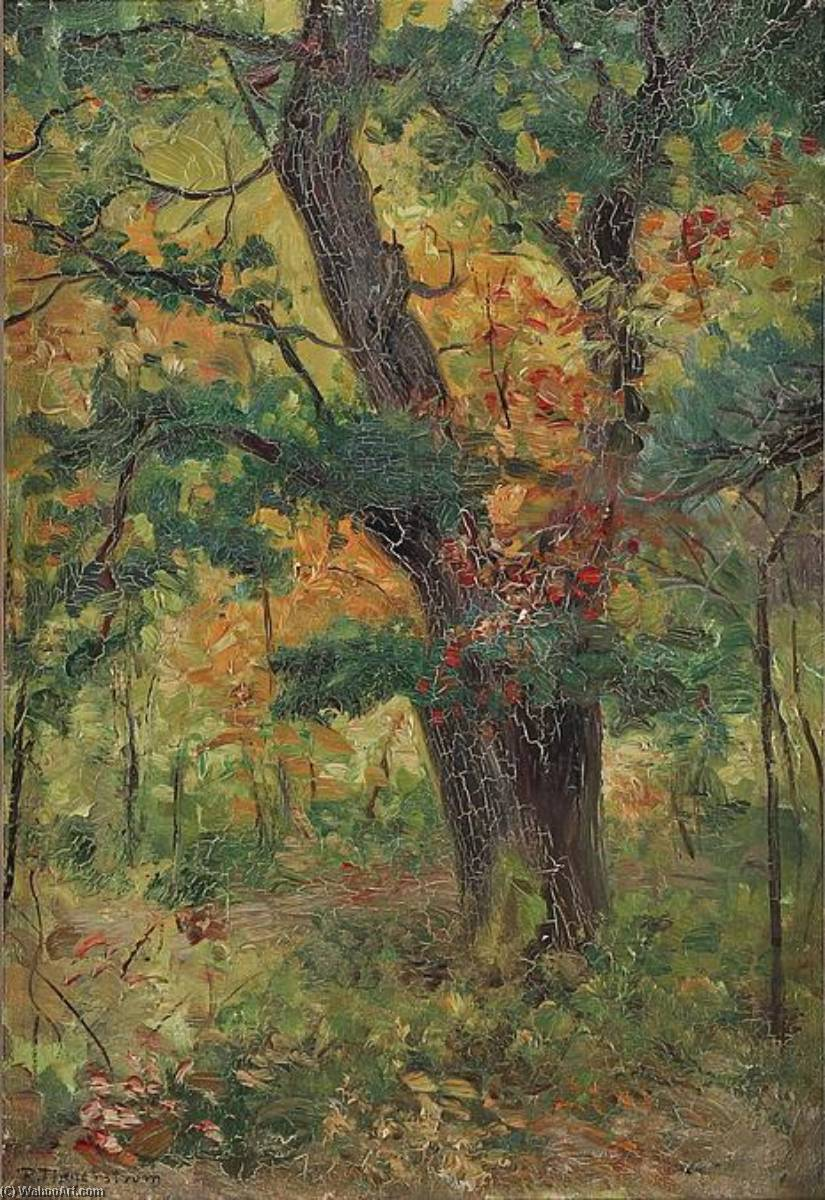 The Forest by Robert Thegerstrom
