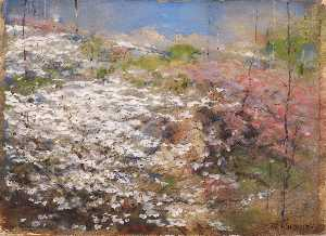 William Henry Holmes - Field of Blossoms