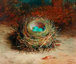 Abel Hold - Hedge Sparrow's Nest