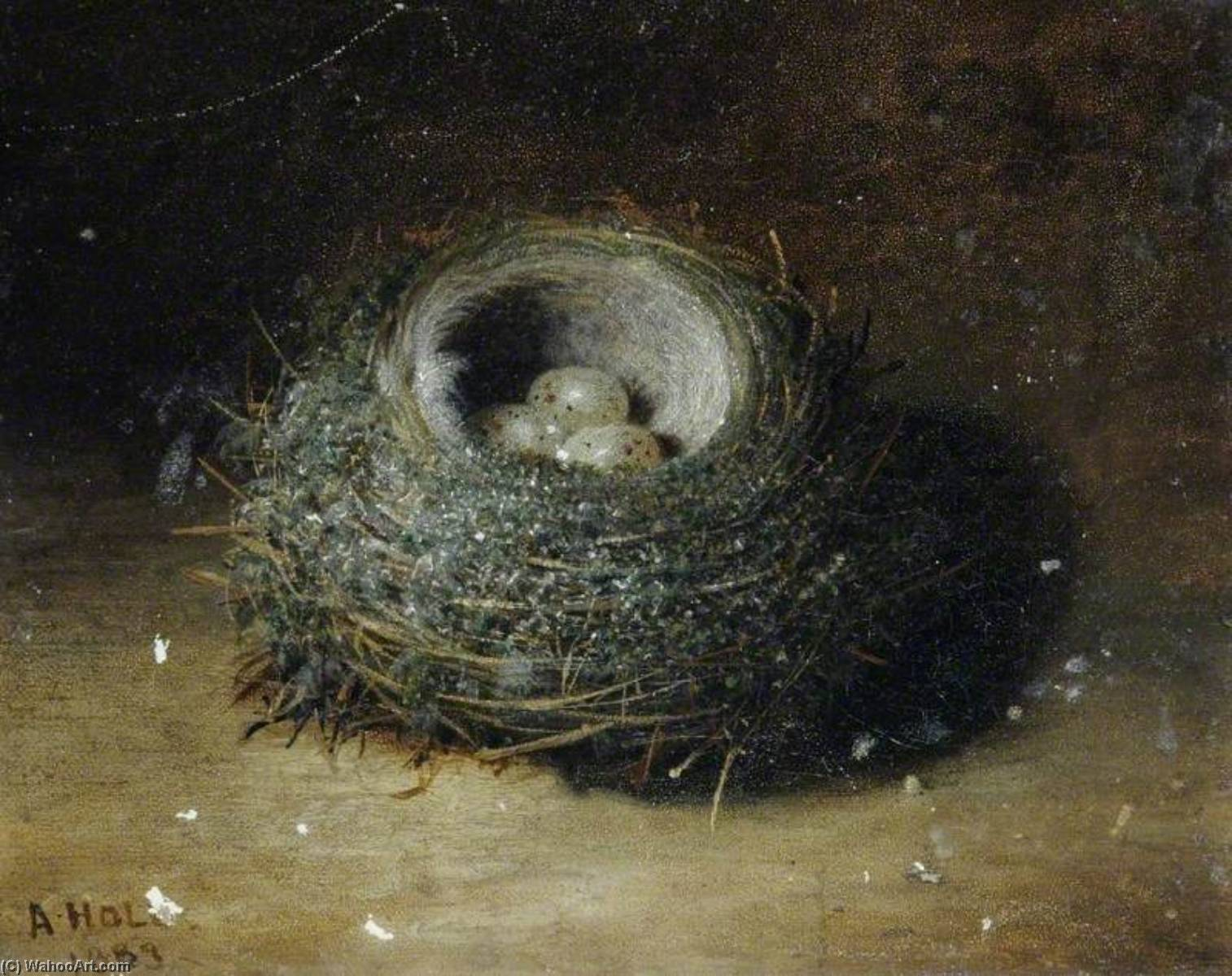 Nest with Three Eggs, 1889 by Abel Hold | Oil Painting | WahooArt.com
