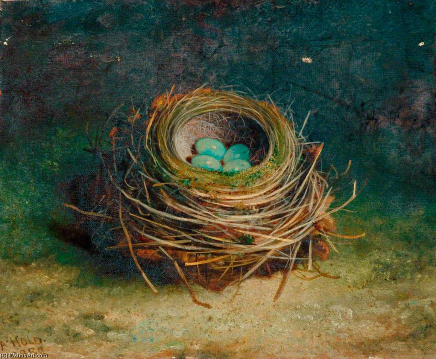 Nest of a Song Thrush, 1882 by Abel Hold | Famous Paintings Reproductions | WahooArt.com