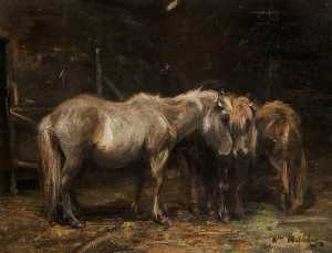 William Walls - Shetland Ponies
