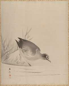Kawabata Gyokushō - Bird at the Water-s Edge