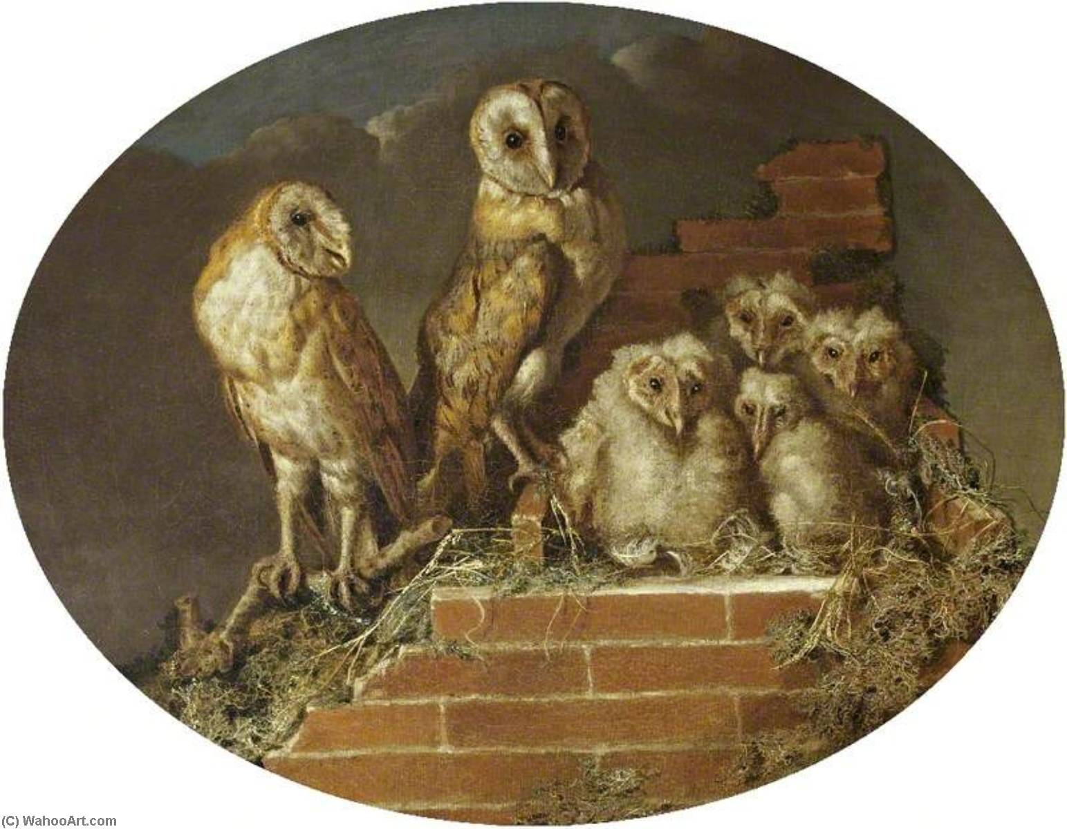 Order Paintings Reproductions | Barn Owls with Their Brood, 1775 by William Tomkins | WahooArt.com