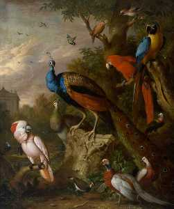 Jakob Bogdany - Peacocks and Other Exotic Birds