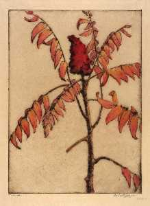 Bertha Evelyn Jaques - Sumac